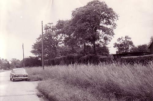 Crawley End north