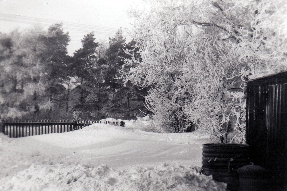 Winter 1959